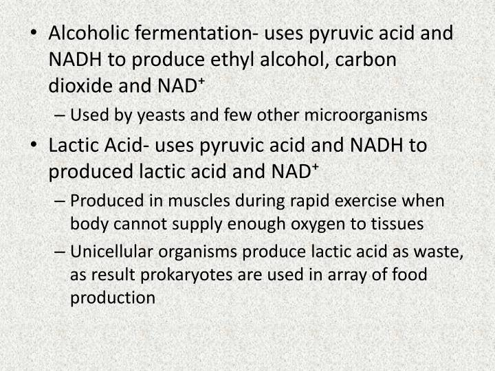 Alcoholic fermentation- uses