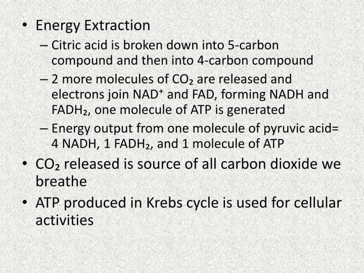 Energy Extraction