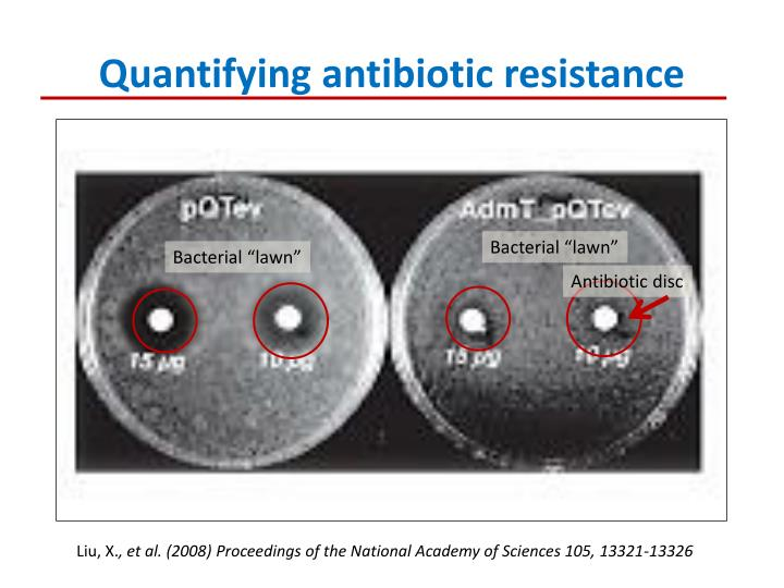 Quantifying antibiotic resistance