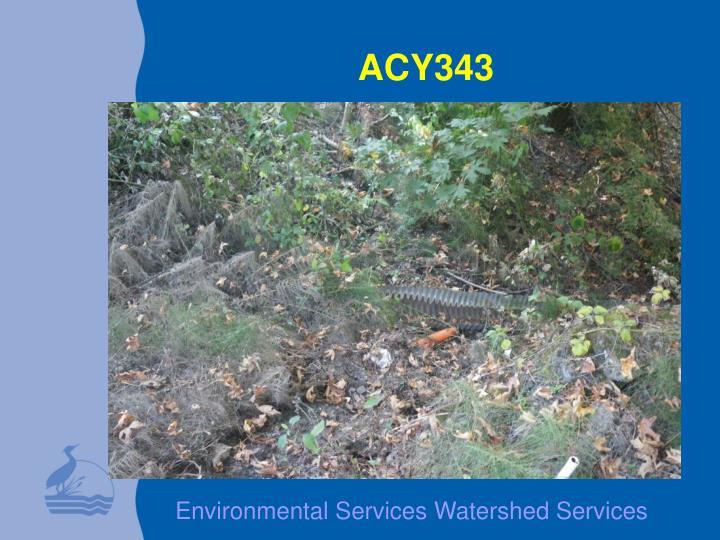 ACY343