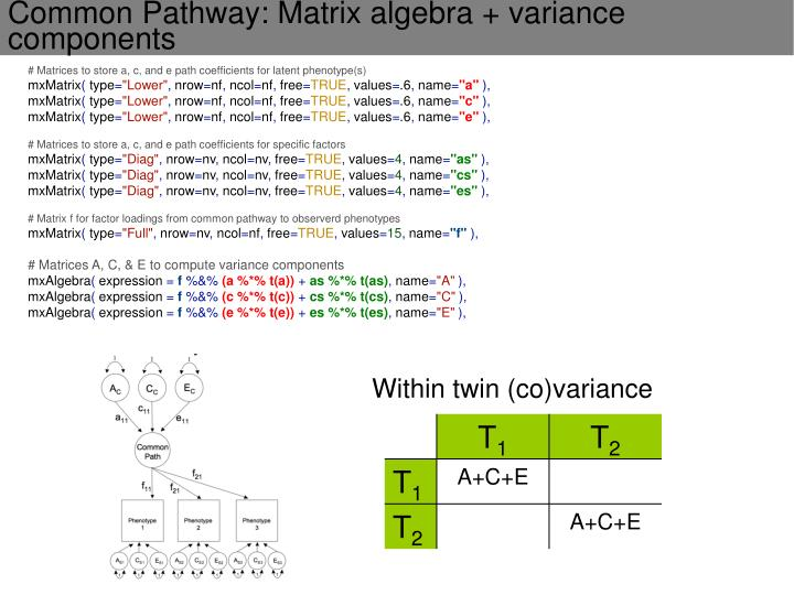 # Matrices to store a, c, and e path coefficients for latent phenotype(s)