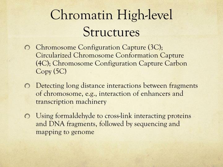Chromatin High-level Structures