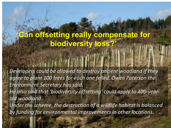 'Can offsetting really compensate for biodiversity loss?'