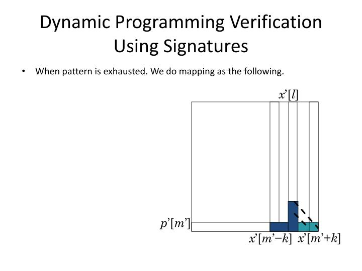 Dynamic Programming Verification Using Signatures