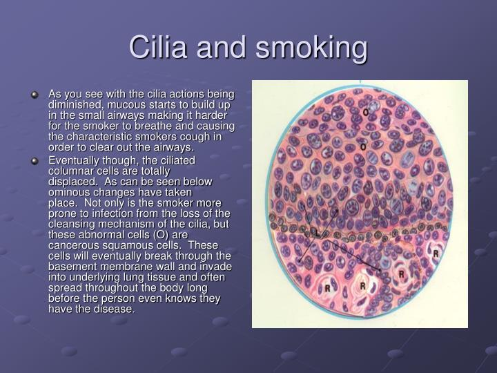 Cilia and smoking
