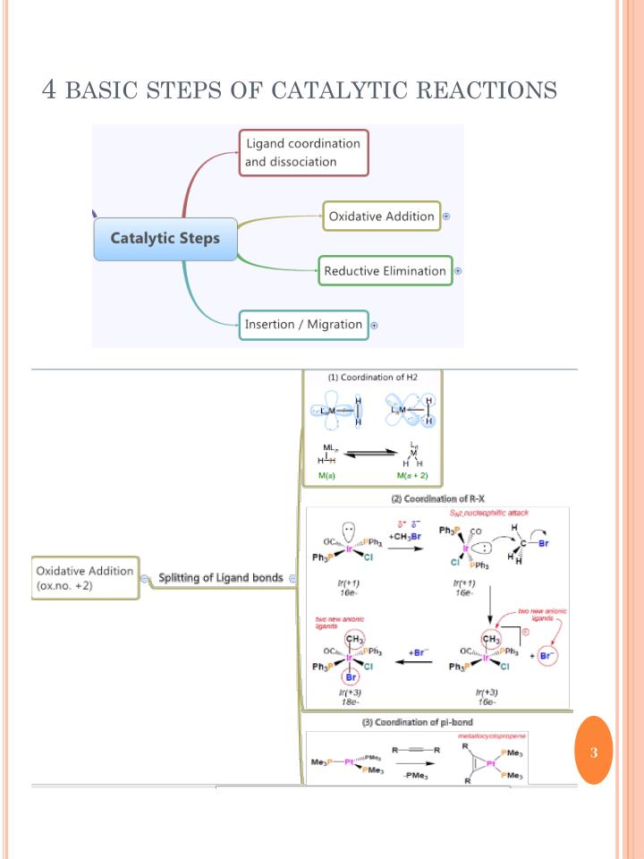4 basic steps of catalytic reactions