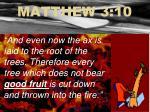 matthew 3 10