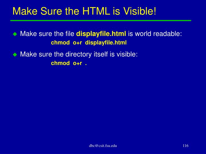 Make Sure the HTML is Visible!