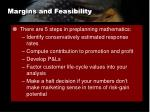 margins and feasibility1