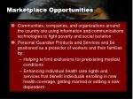 marketplace opportunities7