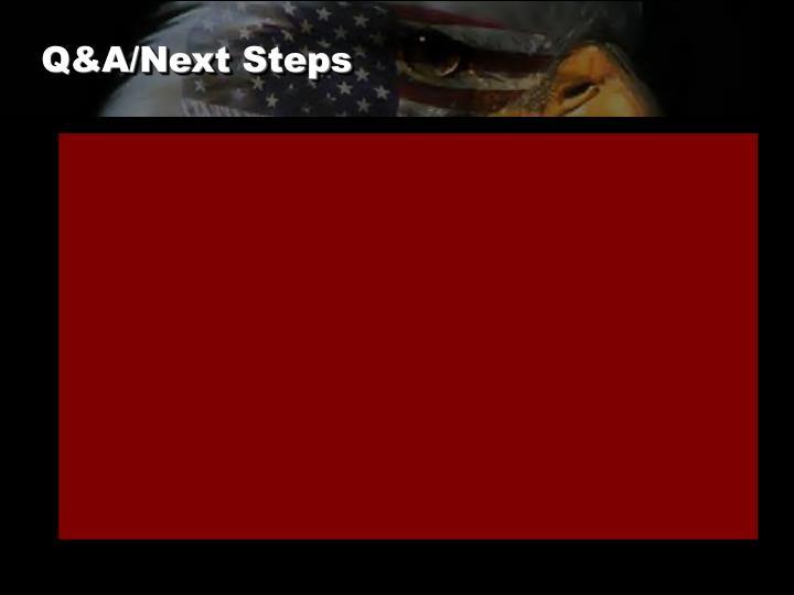 Q&A/Next Steps