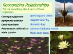 recognizing relationships tell me something about each of these organisms