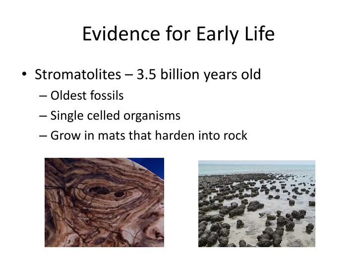 Evidence for Early Life
