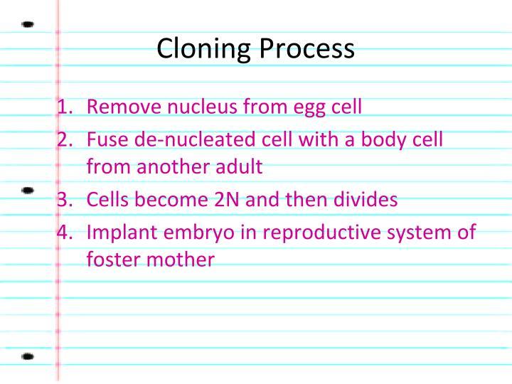 Cloning Process