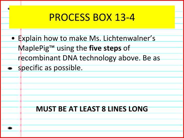 PROCESS BOX 13-4