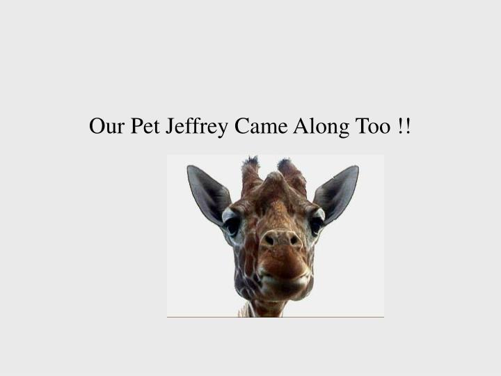 Our Pet Jeffrey Came Along Too !!