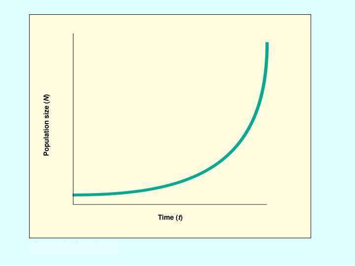 Population size (