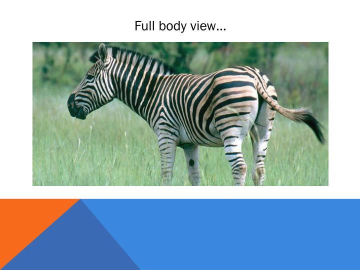 Full body view…