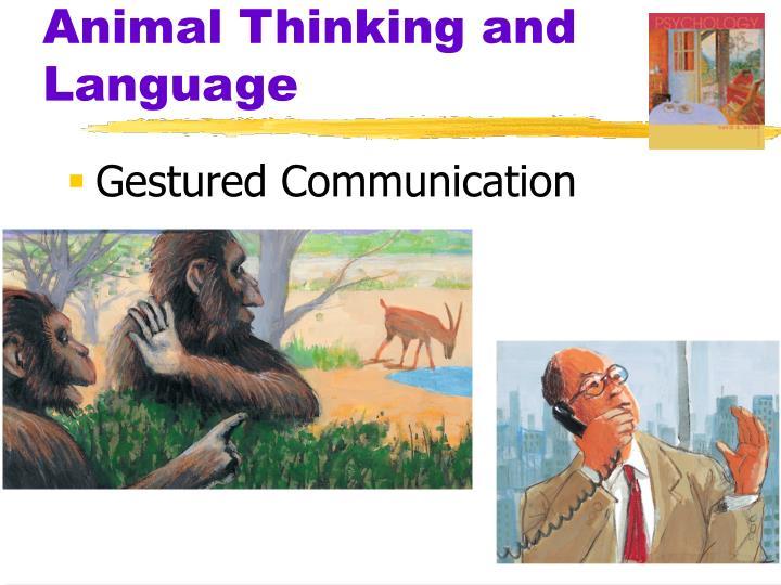 Animal Thinking and Language