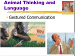 animal thinking and language1