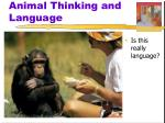 animal thinking and language2
