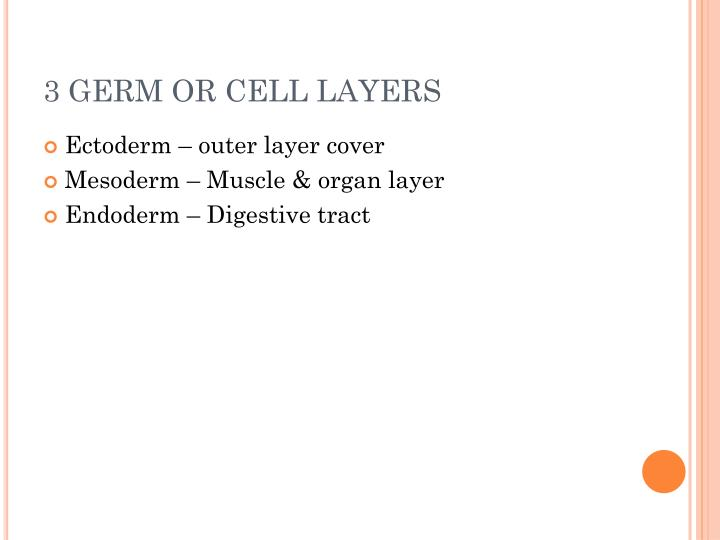3 GERM OR CELL LAYERS