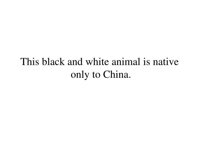 This black and white animal is native