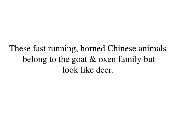 These fast running, horned Chinese animals