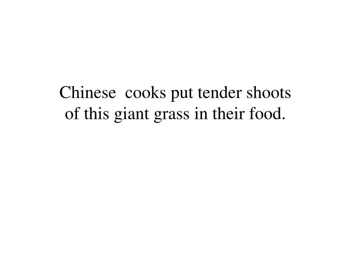 Chinese  cooks put tender shoots