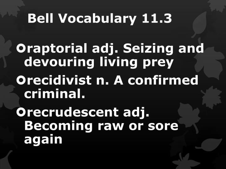 Bell Vocabulary 11.3