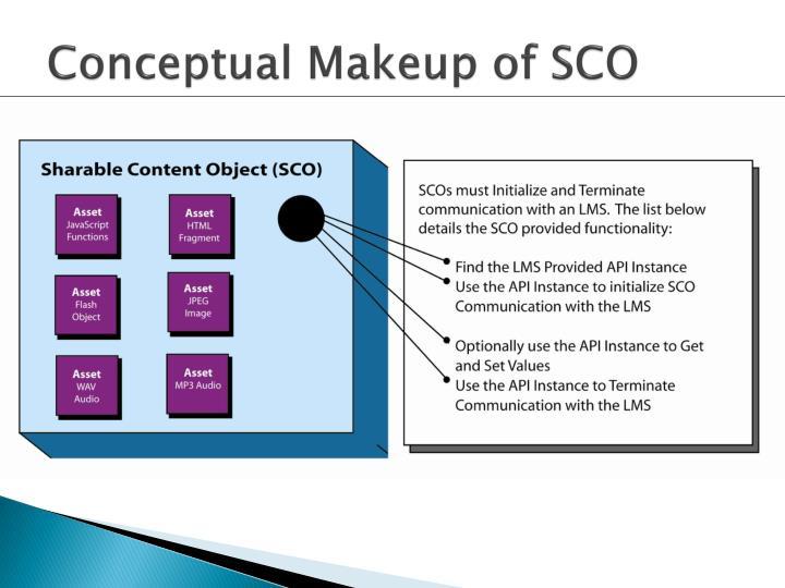 Conceptual Makeup of SCO