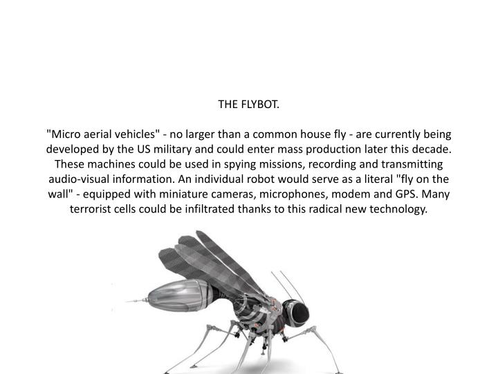 THE FLYBOT.