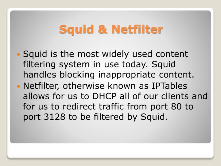 Squid is the most widely used content filtering system in use today. Squid handles blocking inappropriate content.