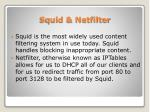 squid netfilter