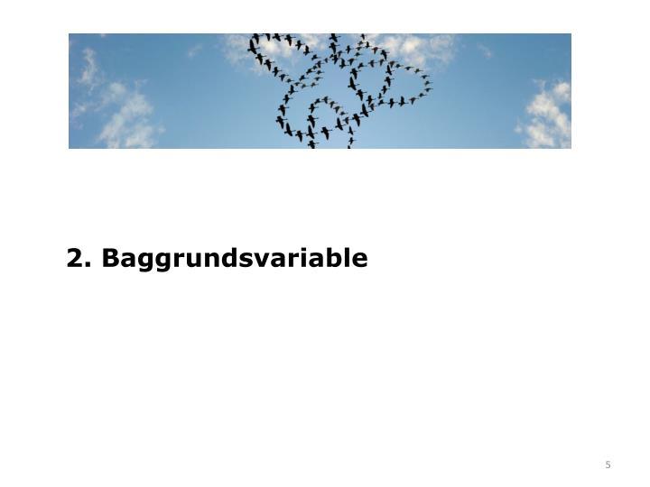 2. Baggrundsvariable