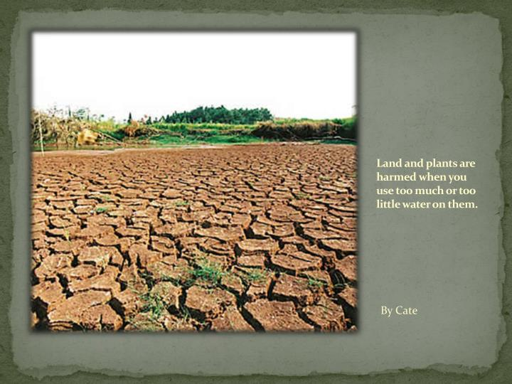 Land and plants are harmed when you use too much or too little water on them.
