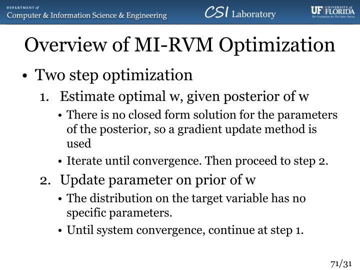 Overview of MI-RVM Optimization