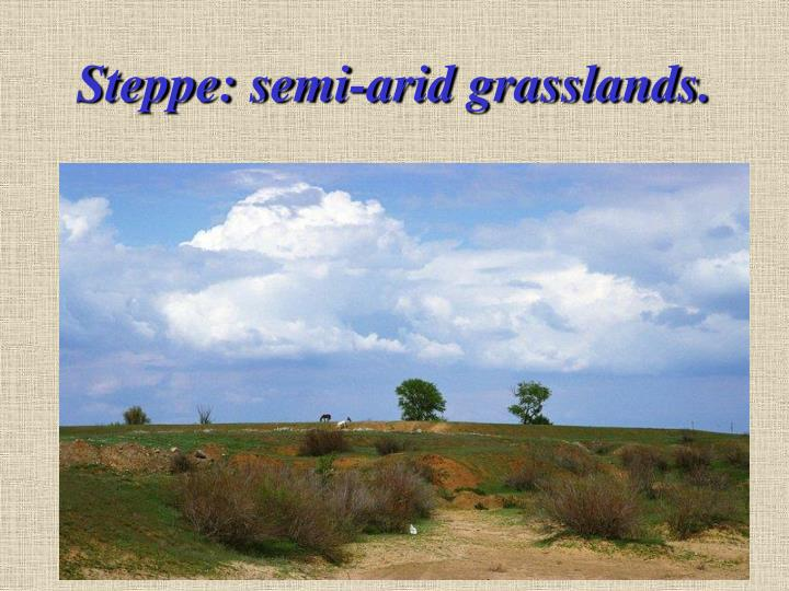 Steppe: semi-arid grasslands.