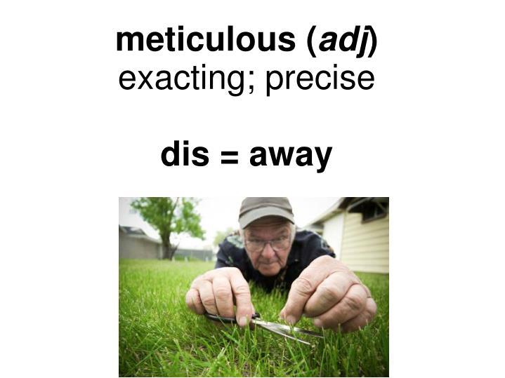 meticulous (