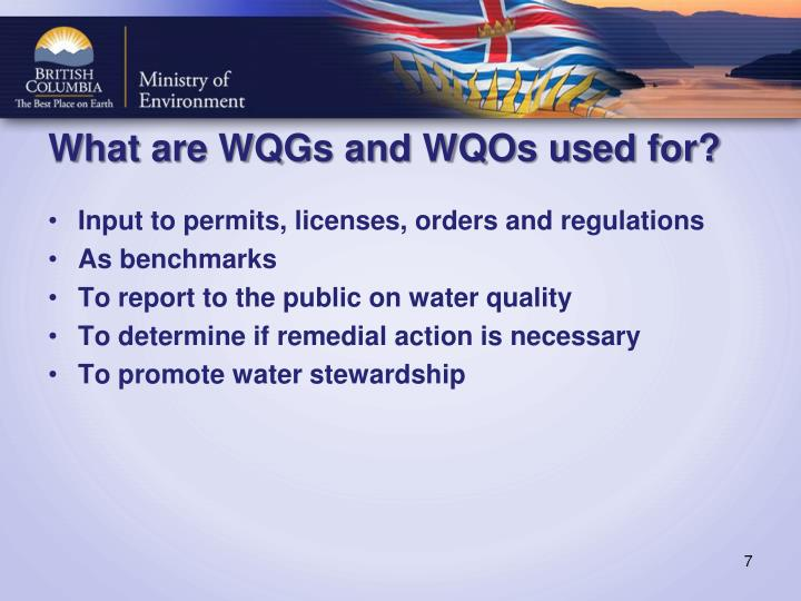 What are WQGs and WQOs used for?