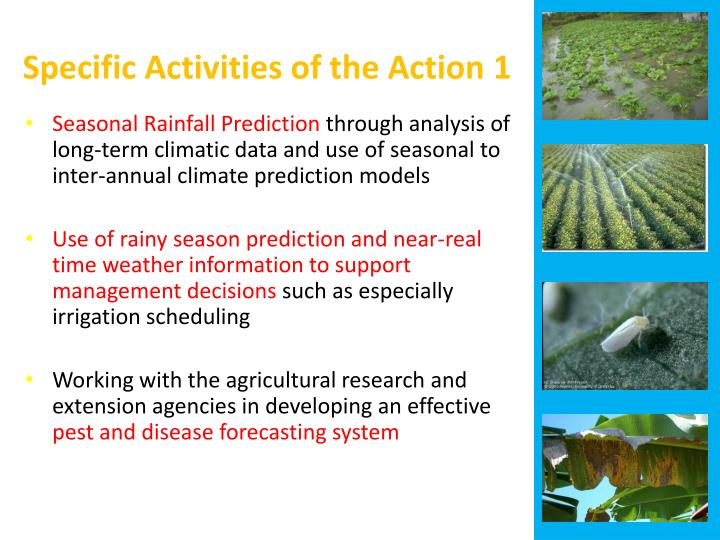Specific Activities of the Action