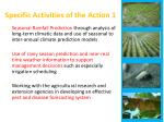 specific activities of the action 1