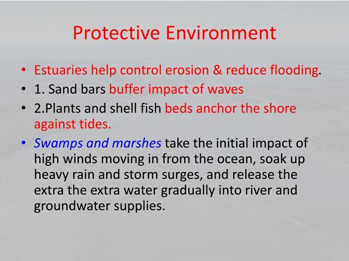 Protective Environment