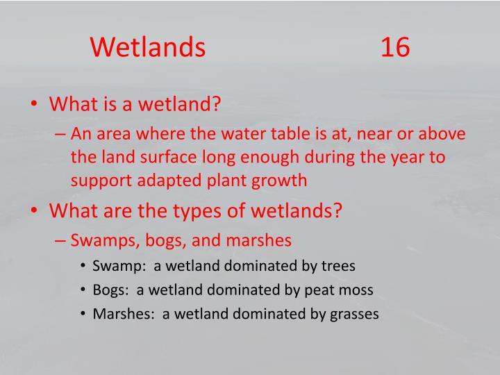 Wetlands                         16