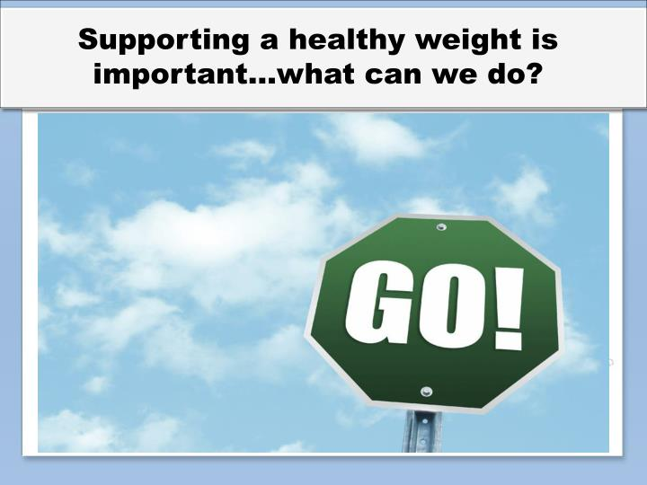 Supporting a healthy weight is important…what can we do?