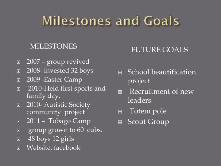 Milestones and Goals
