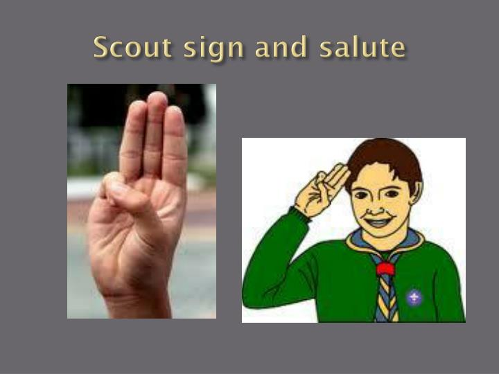 Scout sign and salute
