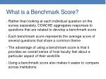 what is a benchmark score