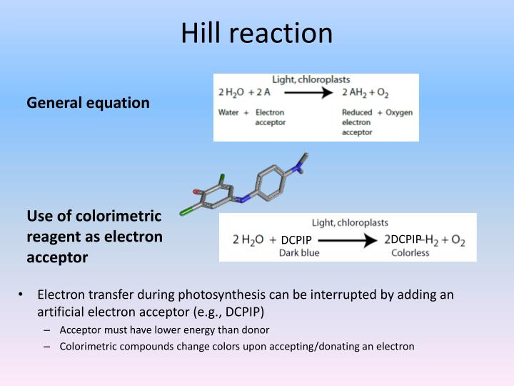 Hill reaction