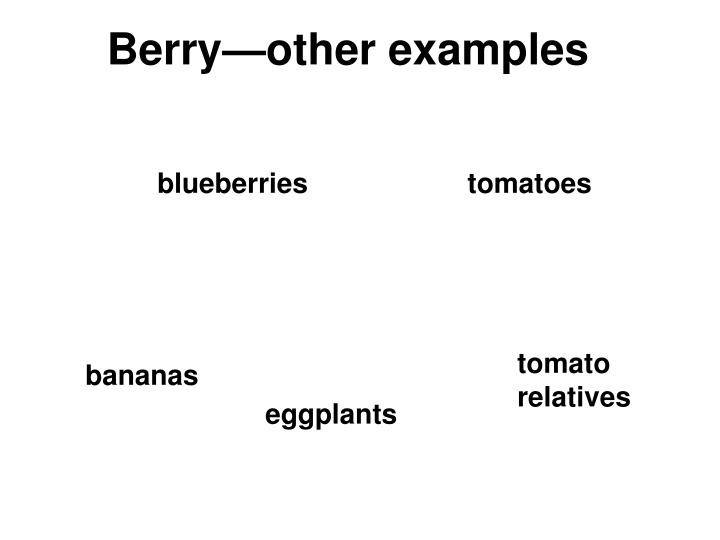 Berry—other examples